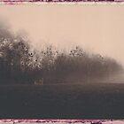 Fog, Frost, Deer by billwolff