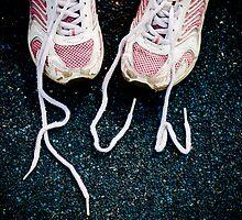 Fun Run! by Sally Werner