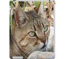 Tabby Cat Portrait iPad Case/Skin