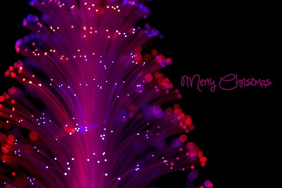 Merry Christmas by Amy Dee
