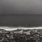 13th November 2012 by David O'Sullivan