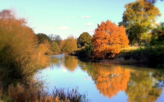 Autumn on the Medway by larry flewers