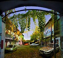 Autumn Courtyard by Igor Zenin