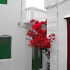 Greek Island street and flowers by SlavicaB