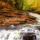 "Fall on the Falls by Christine ""Xine"" Segalas"