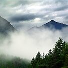 Mountain In The Mist- Mt. Terry Fox by Jann Ashworth