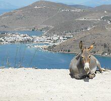 Patmos Island Dunkey by SlavicaB
