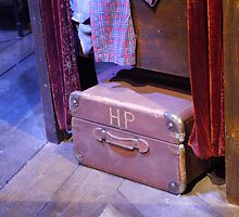H.P Trunk by abbielou182