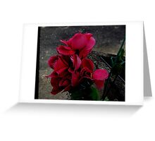 The ragged edges of time..........................! Greeting Card