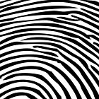 Black & White Fingerprint by TinaGraphics