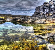 Tidal Pool. by Bette Devine