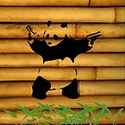 Panda - on Bamboo and Leaves by impulsiVdesigns