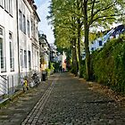 Street - Viertel  by A.David Holloway