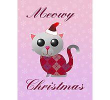 Santa Kitty Photographic Print