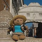 Pilot bear in Venice. by sandyprints