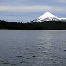 Mount McLoughlin - Lake of the Woods by Harry Snowden