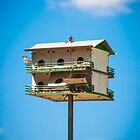 Bird Hotel by Sean Balanger