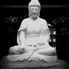 Buddha by Laurie Perry