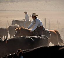 Almo Cowgirl Tough by Gwen montgomery