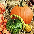 Thanksgiving Harvest by Sharon Woerner