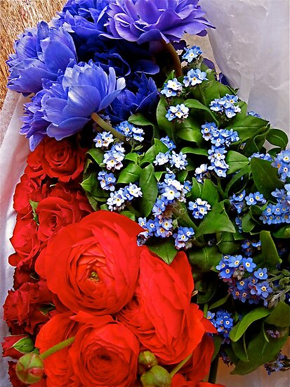 Blue, blue - my love is blue... by Barbara Wyeth