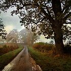 Country Lane by Simon Harris