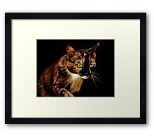 Bella, the painted pussy. Framed Print