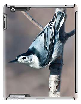 Nuthatch IPad Case by barnsis