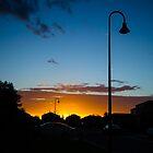 Golden Light by brucejn