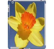 Yellow and Orange Colored Daffodil Close Up iPad Case/Skin
