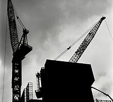 Dancing Cranes by abocNathan