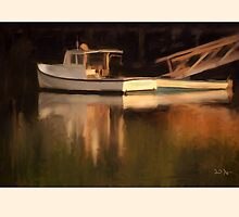 Reflections, Barter Island, Maine by Dave  Higgins