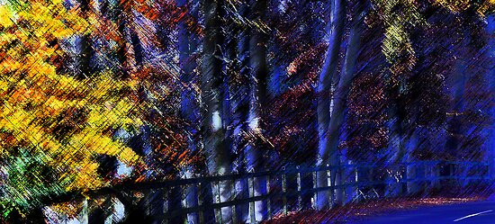 Autumn through a Distorting lens (1) by dmacwill