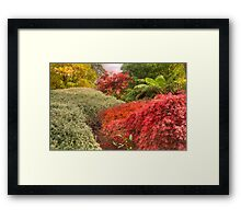 True Colours - Mount Wilson, NSW Australia - The HDR Experience Framed Print