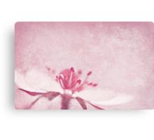 Strawberry Pink Canvas Print