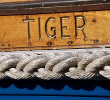 Tiger name on boat, Salcombe, Devon, UK by silverportpics