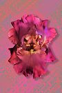 Extraordinarily Pink! by LaRoach