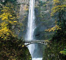 Multnomah Falls Bridge by Dennis Reagan