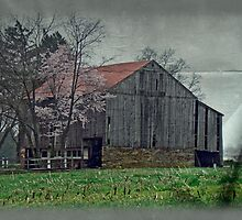 Springtime in Pennsylvania Farm Country by MotherNature