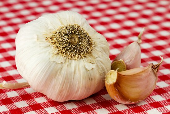 Garlic by BlinkImages