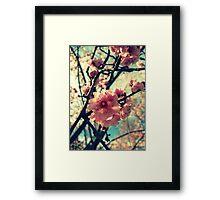 Vintage Blooms Framed Print