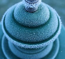 First Hoar Frost by karina5