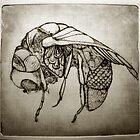 Zinc fly by Freja Friborg