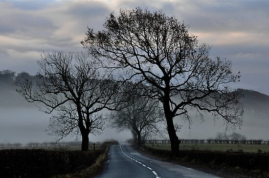 Misty Road by Jim Wilson