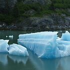 Hubbard Glacier Slice by Guy Jenkins