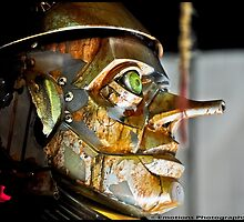 Tinman by Brian L. Giddings of Emotions Photography Inc.