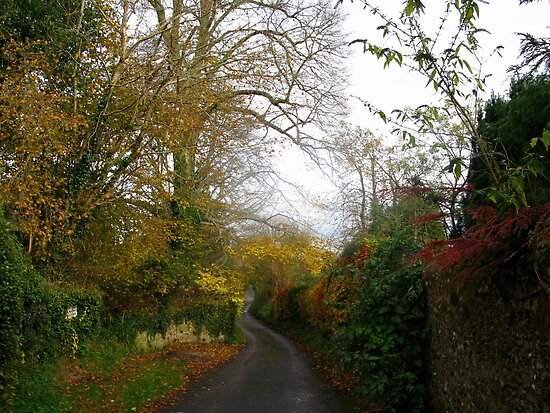 Winding Lane At Lyme Dorset UK by lynn carter