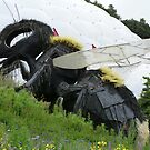 Eden Project, Cornwall by Woodie