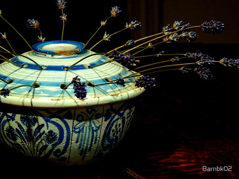 Dried Lavender  by Barnbk02