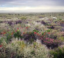 A Bleak October Day on the Heathland by May-Le Ng